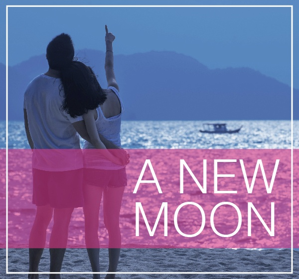 blog_graphics_gma_honeymoons