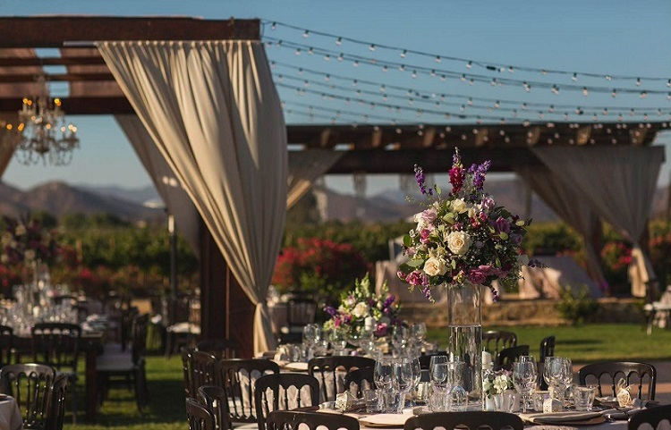 Ensenada winery wedding